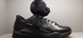 Insolite! Un panda sur les nouvelles chaussures de Metta World Peace