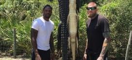 Udonis Haslem et Chris Andersen chassent l'alligator