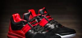 Kicks: lesadidas D Rose Englewood IV