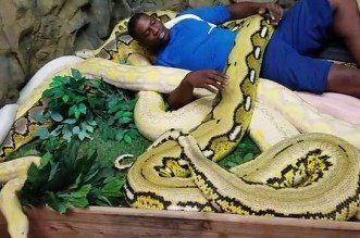 Insolite! Kevin Seraphin prend un bain de pythons